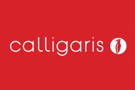 calligaris décoration france